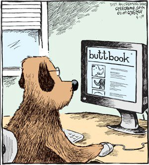 Dogs love Buttbook
