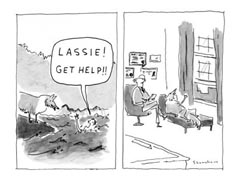 You can always count on Lassie to 'Get Help'...