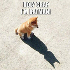 Holy Crap.  I'm Batman!